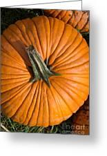 Pumpkin Aerial View Greeting Card