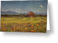 Pumpkin Field Moon Shack Greeting Card