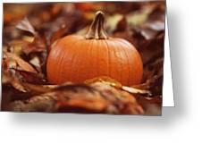 Pumpkin In Leaves Greeting Card