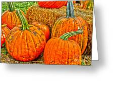 Pumpkin Greeting Card by Baywest Imaging