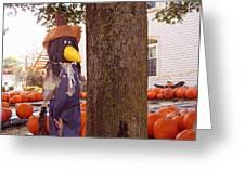 Pumpkin Patch Crow Greeting Card
