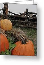 Pumpkin Peepers Greeting Card