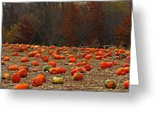 Pumpkin Season Greeting Card