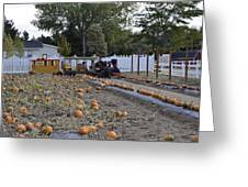 Pumpkin Train Greeting Card