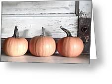 Pumpkin Trio Greeting Card