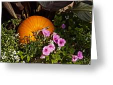 Pumpkin With Purple Flowers Greeting Card