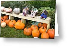 Pumpkins And Birdhouses Greeting Card