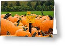 Pumpkins II Greeting Card