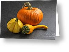Pumpkins On A Slate Plate Greeting Card by Palatia Photo