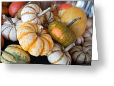 Pumpkins On Pumpkin Patch Greeting Card