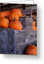 Pumpkins On The Wagon Greeting Card
