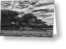 Punakaiki Truman Track #2 - Black And White Greeting Card