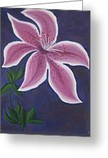 Punctilious Pink Daylily Greeting Card