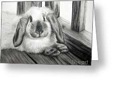 Punky Bunny Greeting Card