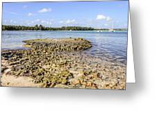 Punta Cana Beach Greeting Card