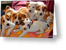 Puppy Crew Greeting Card