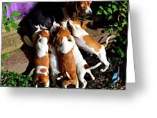 Puppy Dinner Time Greeting Card