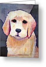 Puppy Dog Greeting Card by Lutz Baar