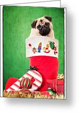 Puppy For Christmas Greeting Card