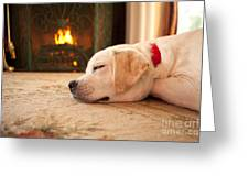 Puppy Sleeping By A Fireplace Greeting Card
