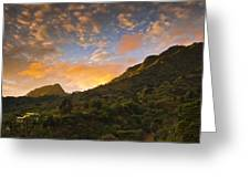 Pura Vida Costa Rica Greeting Card by Aaron Bedell