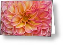 Pure Pastels Greeting Card