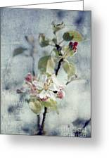 Pure Spring Greeting Card