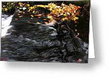 Pure Wild Autumn Denmark Greeting Card