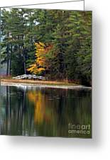 Purity Lake Greeting Card