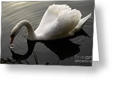 Purity Of Spirit Greeting Card
