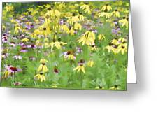 Purple And Grat Coneflowers Greeting Card
