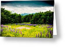 Purple And Mountains And Majesty Greeting Card