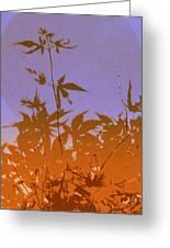 Purple And Orange Haiku Greeting Card