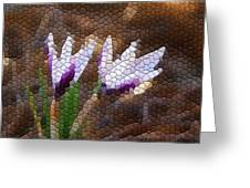 Purple And White Crocus Greeting Card