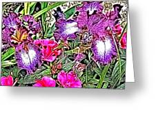 Purple And White Irises And Pink Flowers Greeting Card