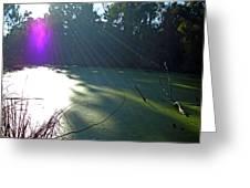 Purple Angel Of Lagoon Greeting Card