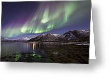 Purple Auroras Greeting Card