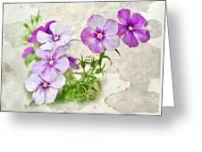 Purple Beauties Greeting Card