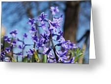 Purple Bell Greeting Card