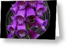 Purple Bells Greeting Card