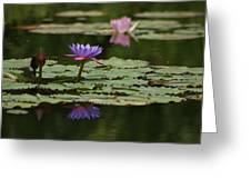 Purple Blossoms Floating Greeting Card