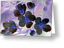 Purple Blue And Gray Greeting Card