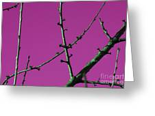 Purple Branches Greeting Card