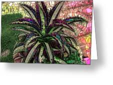 Purple Cactus II Greeting Card