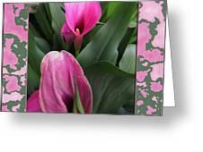 Purple Calla Lilies Greeting Card