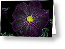 Purple Charisma Greeting Card