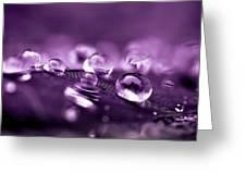 Purple Droplets Greeting Card