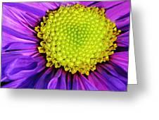 Purple Fantasy Greeting Card