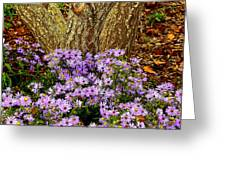 Purple Flowers At Base Of Tree Greeting Card