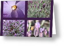 Purple Flowers Collage Greeting Card